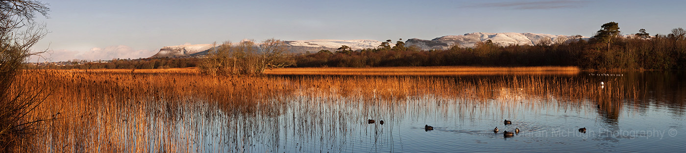 Ciaran McHugh Photography, Sligo: winter morning at doorly park